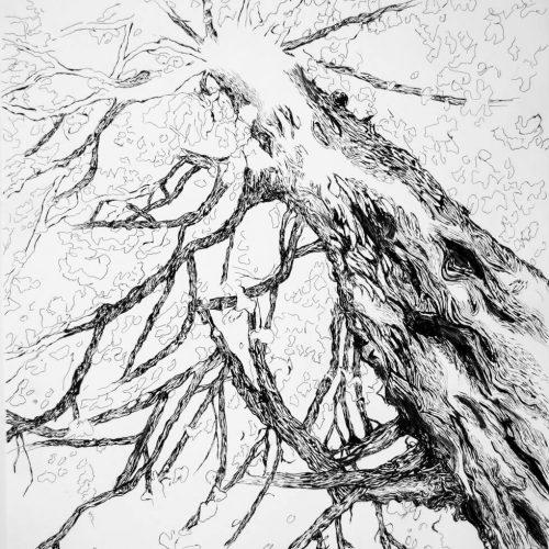 Japan, ink on paper, 70 x 50 cm., 2018.