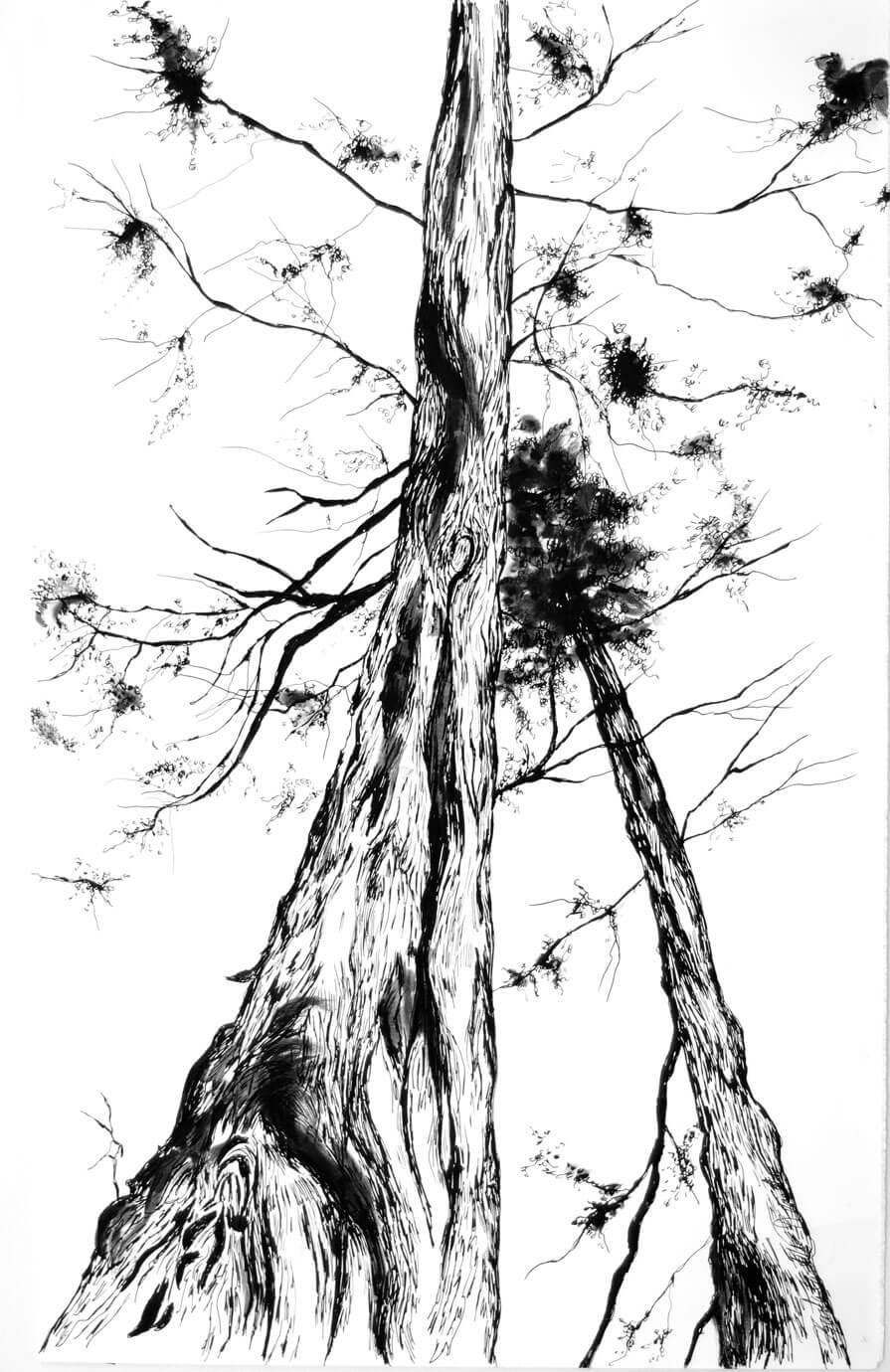 Japan, ink on paper, 49.5 x 30.7 cm., 2018.