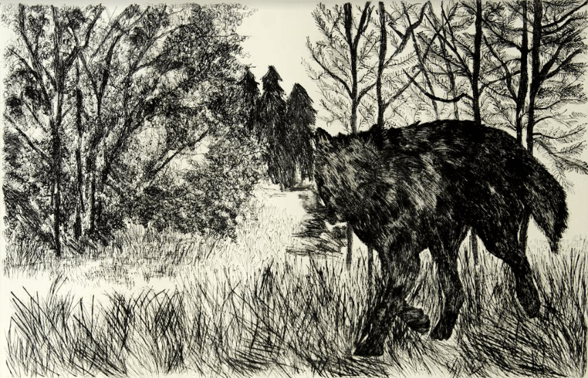 Animals, dry point on cotton paper, 55 x 84.5 cm., 2013.