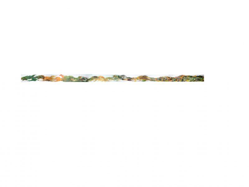 Grass, 6.5 m x 39.5 cm., 2013 - 2019