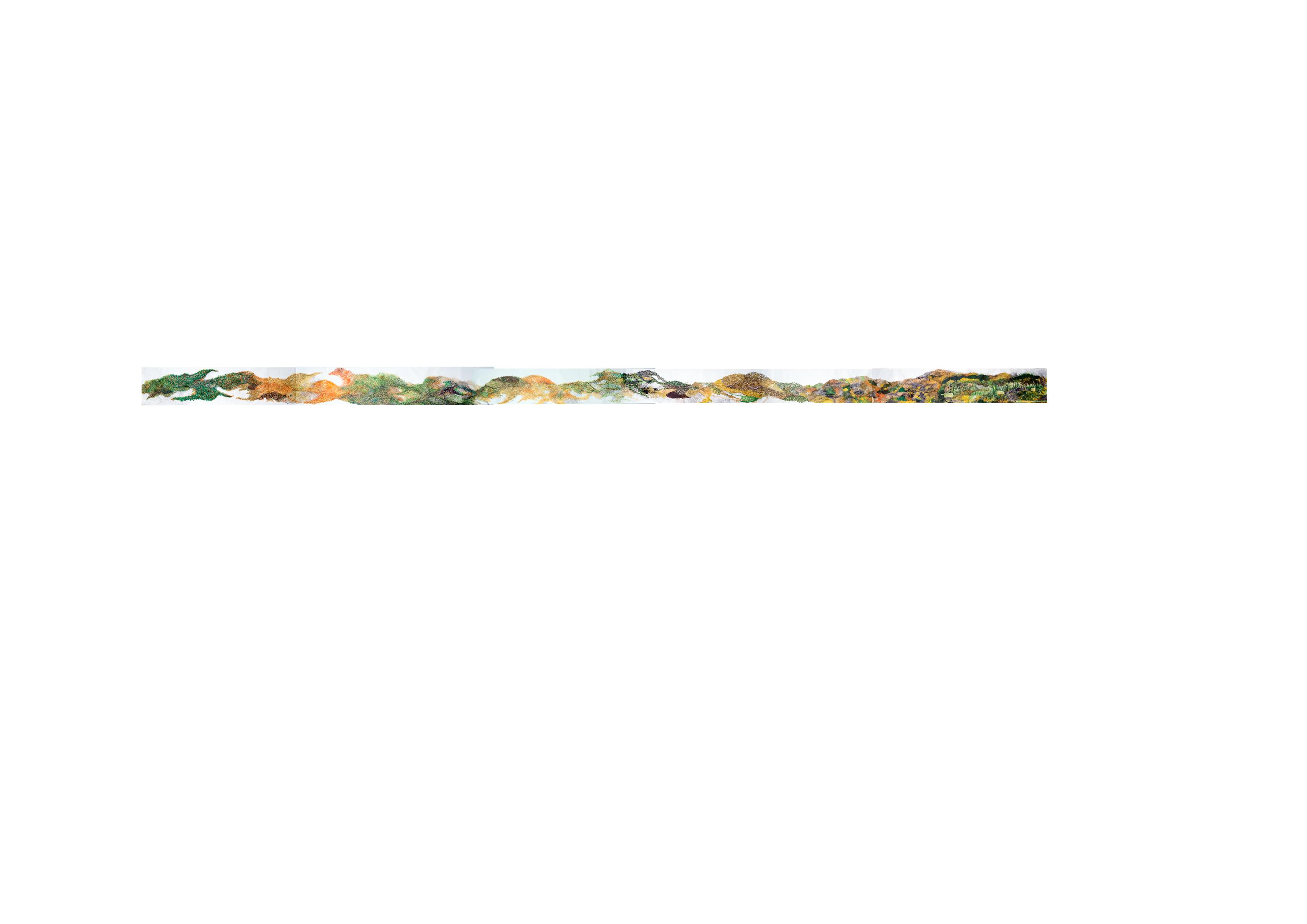 Grass, 11 m x 39 cm., 2018