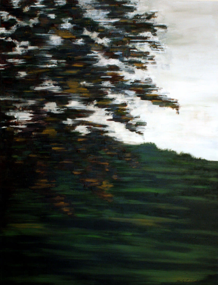 Landscapes, oil on canvas, 120 x 90 cm., 2010