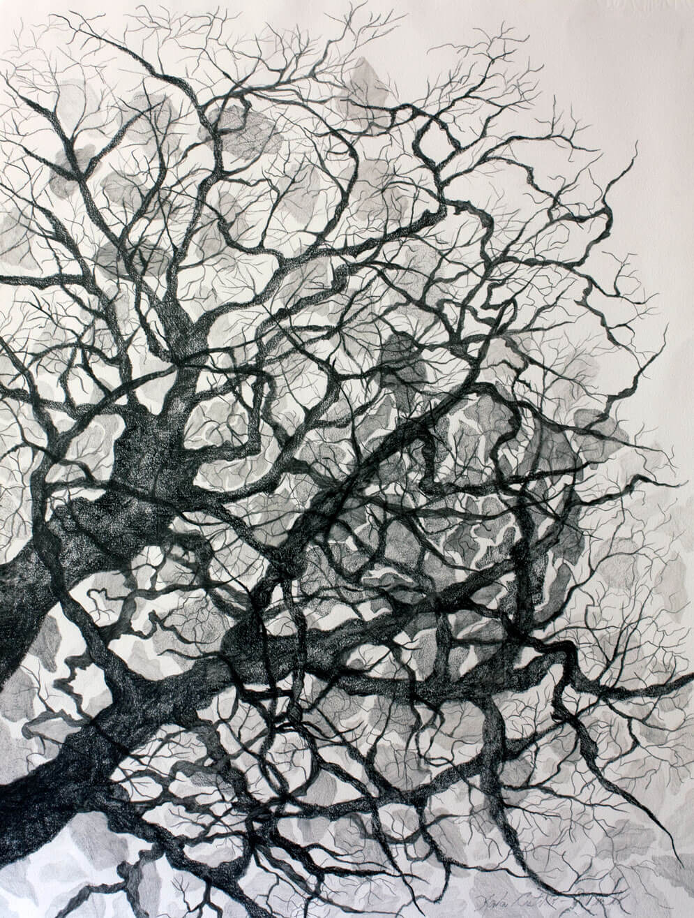 Landscapes, on cotton paper, 70 x 49.5 cm., 2010
