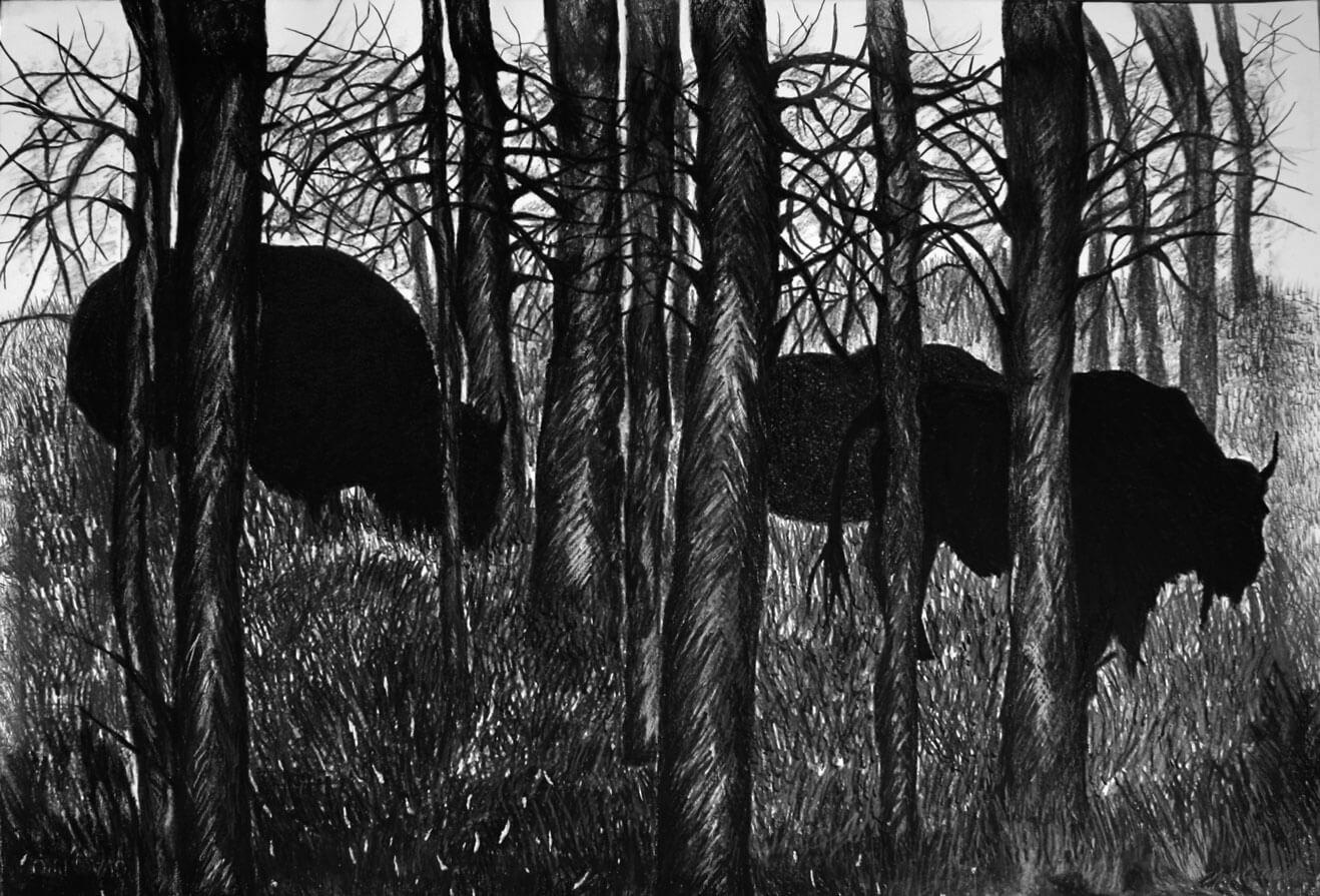 Animals, graphite, oil pastel on cotton paper, 74 x 100 cm., 2006.
