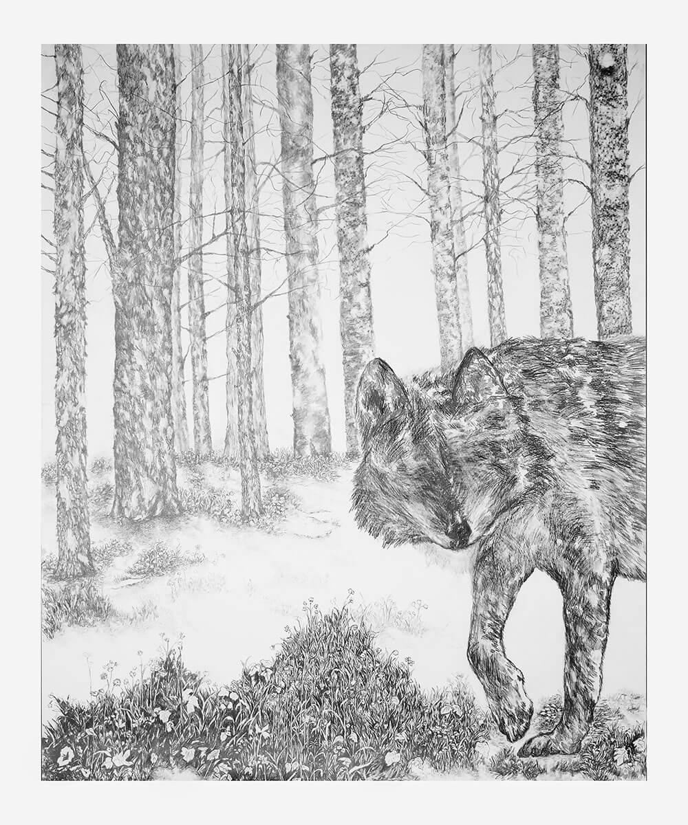 Animals, graphite on cotton paper, 115 x 143 cm., 2015-2018.