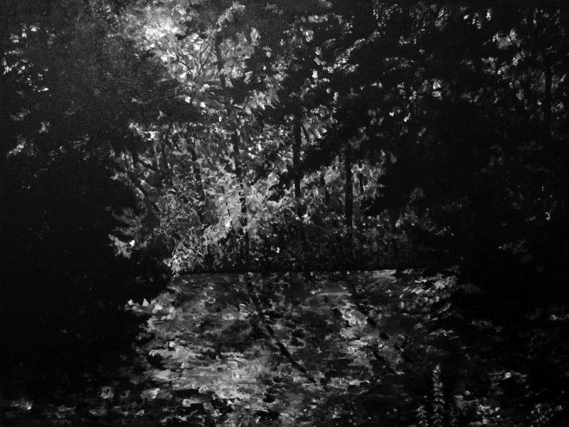 Landscapes, acrylic on canvas, 90 x 120 cm., 2010.