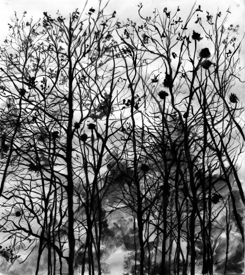 Landscapes, ink on cotton paper, 54.5 x 49.5 cm., 2017.