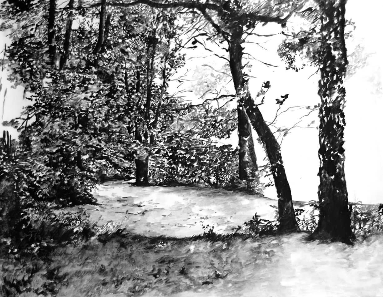 Landscapes, graphite and watercolour on cotton paper, 70.2 x 89.2 cm., 2018.