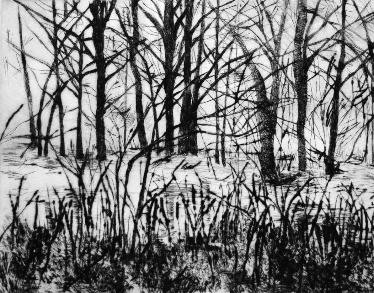 Landscapes, drypoint on copper plate, 25 x 19.5 cm., 2016.