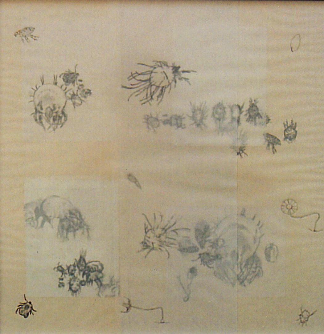 Lilliput, graphite on vellum paper, 54 x 55 cm., 2006.