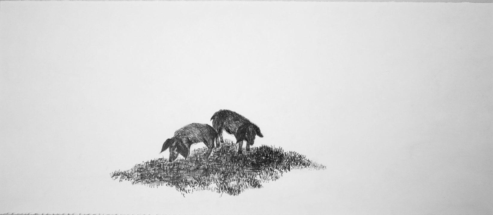 Lilliput, graphite on cotton paper, 20 x 49 cm., 2007.
